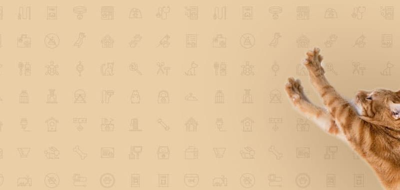 kedi-kategori-banner-1250